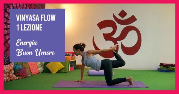 Vinyasa Flow: Energia e Buon Umore. Una Lezione