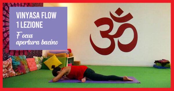 Vinyasa Flow - focus apertura del bacino. Una Lezione.